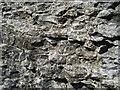 SK1481 : Limestone by Stephen Burton