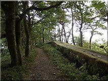 NY7868 : Hadrian's Wall and Hadrian's Wall path by Rudi Winter