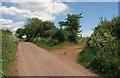 SX7957 : Lane to Luscombe Cross by Derek Harper