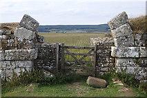 NY7868 : Border gate, Milecastle 37, Hadrian's Wall by Rudi Winter