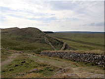 NY7868 : Hadrian's Wall west of Milecastle 37 by Rudi Winter