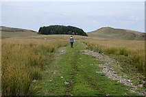 NY7869 : Footpath on the north side of Hadrian's Wall by Rudi Winter