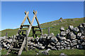 NT5911 : A ladder stile on Bonchester Hill by Walter Baxter