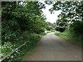 SP3266 : Lane heading south-east to Newbold Comyn by Christine Johnstone