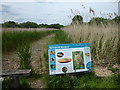 TQ0492 : Springwell Reedbed seen from the Grand Union Canal towpath by Marathon