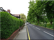 SJ3454 : Chester Road, Gresford by JThomas