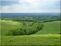 TQ2813 : View north over Wellcombe Bottom by Robin Webster
