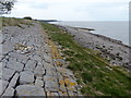 SJ2374 : Sea wall along the Dee Estuary near Bagillt by Mat Fascione