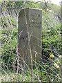 SJ3069 : Hawarden/Englefield Lordship/Flint Boundary Stone near the River Dee (west face) by John S Turner