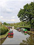 SK1409 : Wyrley and Essington Canal near Huddlesford Junction, Staffordshire by Roger  Kidd