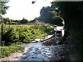 TL7027 : Pod's Brook, Littles Lane, Shalford Green, Essex by Mark T Pierson