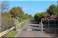 NC8952 : A897 near Trantlebeg by Chris Heaton