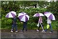 H4772 : Walking in Unison along Donaghanie Road by Kenneth  Allen
