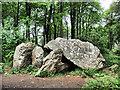 O2738 : Collapsed Dolmen by kevin higgins