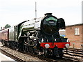 SU1330 : 'Flying Scotsman' by Peter Trimming
