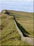 NY7969 : Hadrian's Wall north of King's Wicket by Rudi Winter