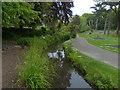 SZ5577 : Ventnor Park, Isle of Wight by Robin Drayton