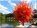 TQ1876 : Sculpture by Chihuly at Kew Gardens by Ruth Sharville