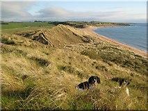 NU2422 : Dunes, Embleton Bay by Jonathan Wilkins