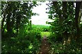 SP3004 : Public footpath entering a field from The Plantation, near Bampton, Oxon by P L Chadwick