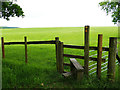 SJ5472 : Stile on the edge of Delamere Forest by Stephen Craven