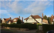 ST5576 : Houses on Bell Barn Road, Stoke Bishop by David Howard