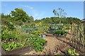 SE2754 : Kitchen garden in Harlow Carr by DS Pugh