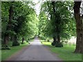 SD8033 : Stockbridge Drive to Gawthorpe Hall by Steve Daniels