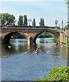 SO8454 : Rowing under Worcester Bridge by Des Blenkinsopp