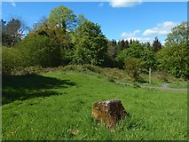 NS4760 : Small marker in Glen Park by Lairich Rig