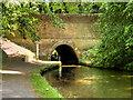 SJ4134 : Llangollen (Shropshire Union) Canal, Ellesmere Tunnel by David Dixon