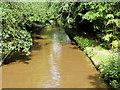 SJ4233 : Llangollen Canal at Colemere by David Dixon