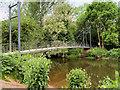 SJ5510 : Attingham Park, Suspension Bridge over The River Tern by David Dixon