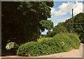 SX8755 : Junction at Lower Greenway by Derek Harper