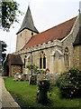 SU8003 : Holy Trinity Church, Bosham by Paul Gillett