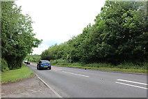 SP7333 : The A421, Thornborough by David Howard