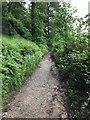 SJ5258 : Sandstone Trail by John H Darch