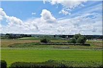 TQ3616 : Plumpton Racecourse by PAUL FARMER