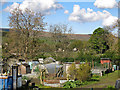 NY9038 : Allotments in Westgate (2) by Mike Quinn