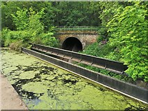 SK3155 : Entry to Leawood Tunnel by Chris Morgan