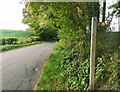 TQ5513 : Footpath Sign Thunders Hill by PAUL FARMER