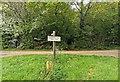 TQ5514 : Sign 'Boltwood Stud Park Farm' at footpath junction by PAUL FARMER