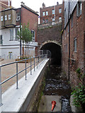 SX9192 : The Town Leat, Exeter by Chris Allen