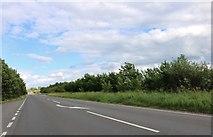 SP6719 : Akeman Street, Grendon Underwood by David Howard