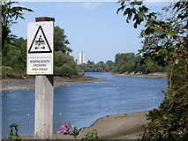 TQ1776 : River Thames with rowing boat warning by Robin Webster