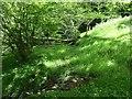 NZ7703 : Fallen tree across a bridleway, Glaisdale by Christine Johnstone