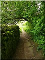SK2572 : Narrow path in Baslow by Graham Hogg