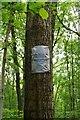 SO7962 : Warning notice on tree, North Wood (part of Ockeridge Wood), near Wichenford, Worcs by P L Chadwick