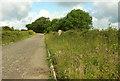 SX6794 : Ringhill Cross by Derek Harper