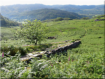 SH6251 : Lower end of former quarry incline in Cwm Llan by Gareth James